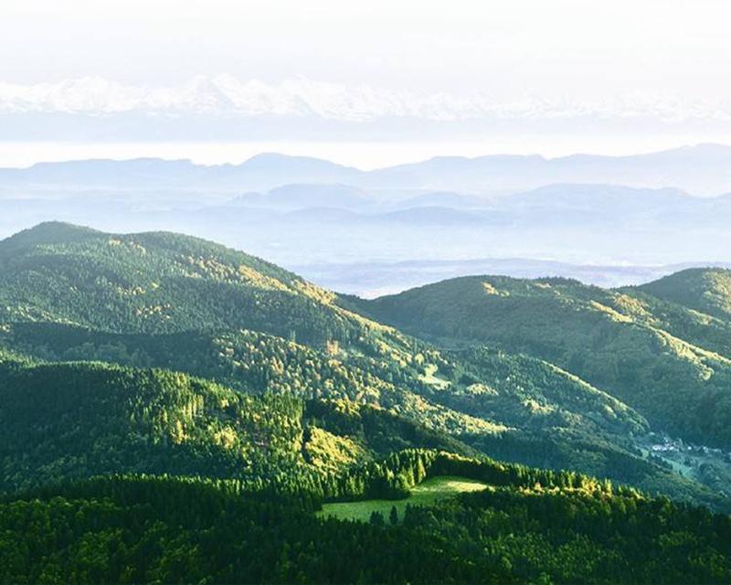 贵州矿业权资产评估公司选择